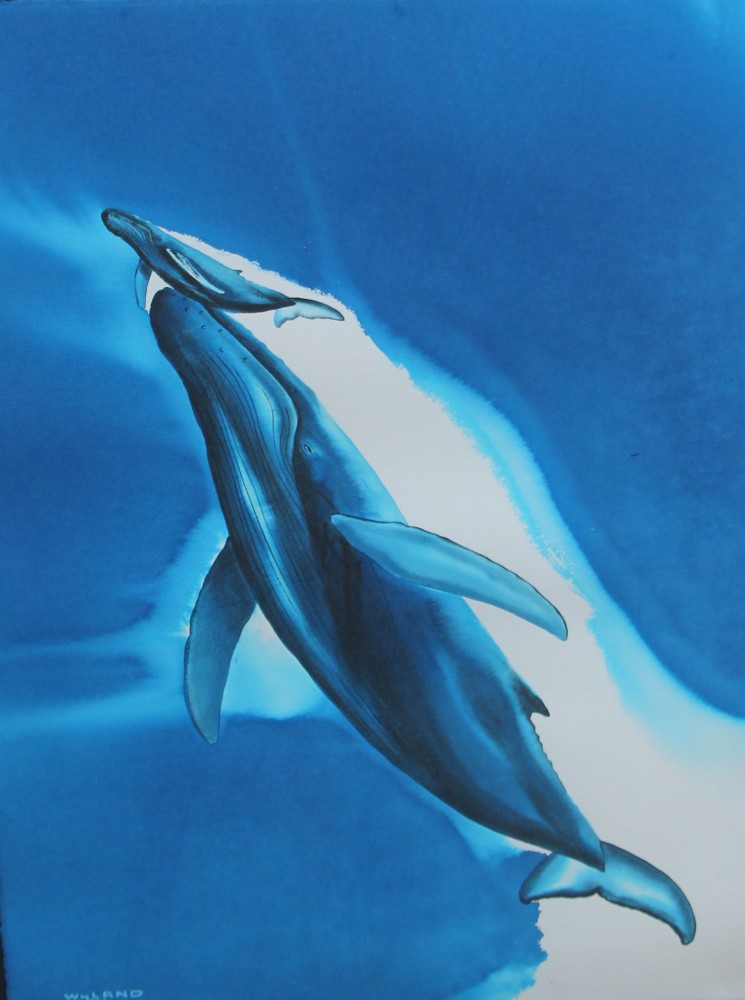 Wyland Paintings For Sale