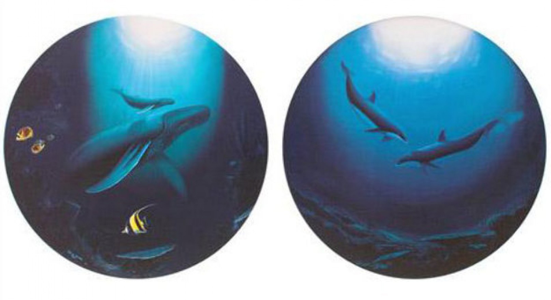Inocent Age / Dolphin Serenity 1993