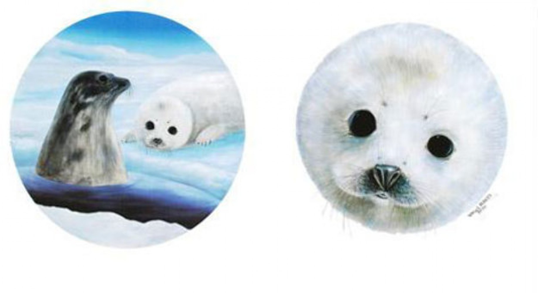 Save the Seals 1990