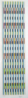 Vertical Orchestration Limited Edition Print - Yaacov Agam