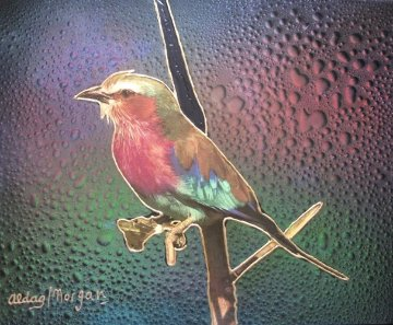 Bird 16x20 Original Painting - Juergen Aldag