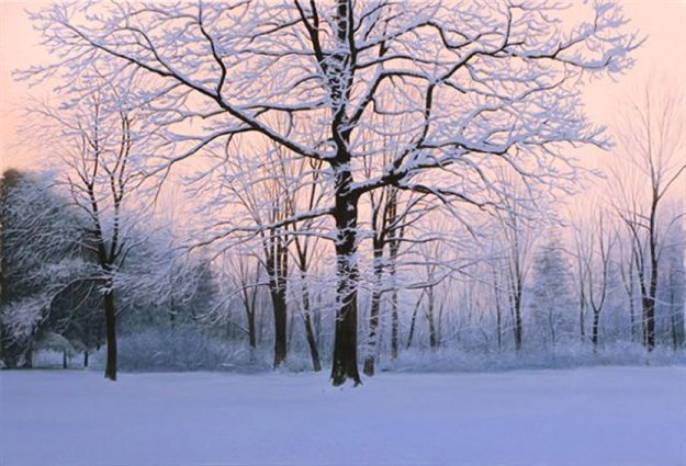 Winter Sunrise 2007 51x69