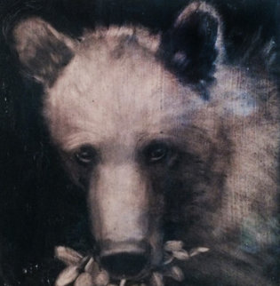Black Bear 2000 39x36 Original Painting - Joe Andoe