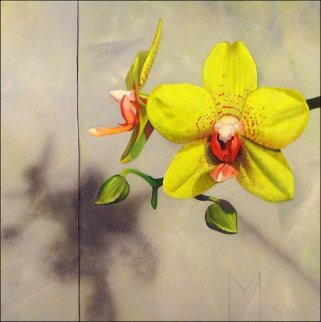Yellow Orchids 2008 15x15 Original Painting - Matthew Bates
