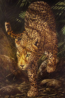 Evening Prowl 2006 Limited Edition Print - Andrew Bone