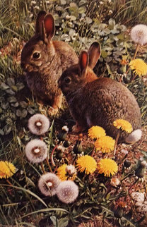 Colorful Playground - Cottontails 1986 Limited Edition Print - Carl Brenders