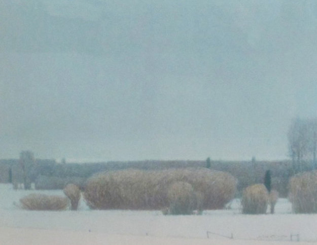 Willows in the Snow 1990