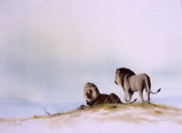 Two Male Lions Watercolor 1995 17x21 Watercolor - Craig Bone