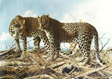 Leopard Lovers At Chitake Springs 1995 35x47 Original Painting - Craig Bone