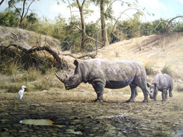 Untitled Rhinoceros 1995 29x50 Original Painting - Craig Bone