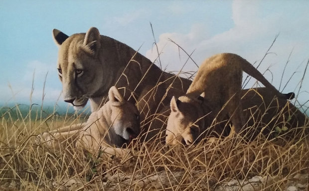 Mother Feeding Cubs 24x32