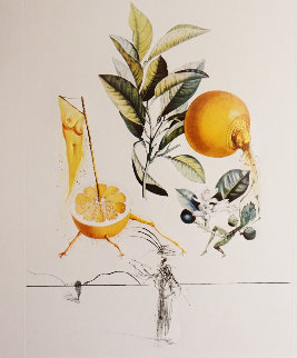 Flordali / Les Fruits Grapefruit 1969 Limited Edition Print by Salvador Dali