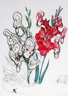Pirates Gladioli 1972 Limited Edition Print - Salvador Dali