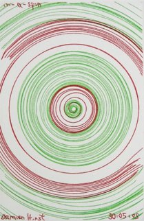 In a Spin, From in a Spin 2002 Limited Edition Print - Damien Hirst