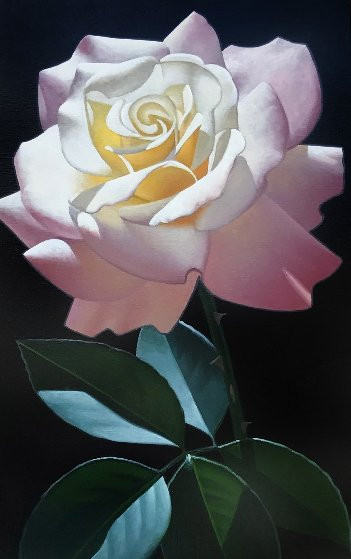 Long Stem Pink and White Rose 1999 40x22