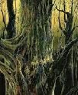 Ancient Tree 1992 Limited Edition Print - Eyvind Earle