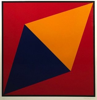 Orange Triangle 2012 Limited Edition Print - Charles Hinman