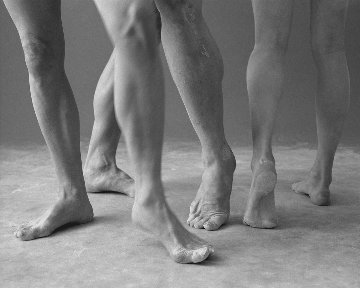 Australian Ballet Series 2 Sydney 1999 Panorama - James Houston
