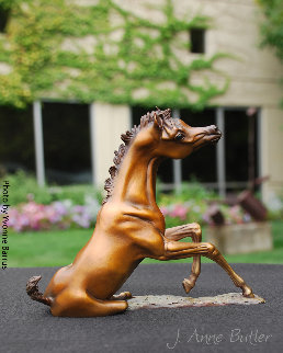 Rise And Shine Bronze Foal Statue 2018 8 in Sculpture - J. Anne Butler