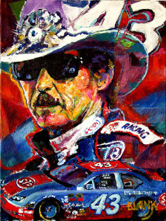 Richard Petty 2009 24x18 Original Painting - Jerry Blank