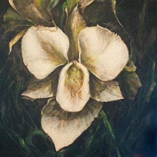 Untitled Orchid  2015 24x24 Original Painting - Joseph Kinnebrew