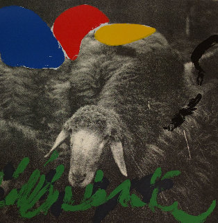 Sheep 1 Limited Edition Print - Menashe Kadishman