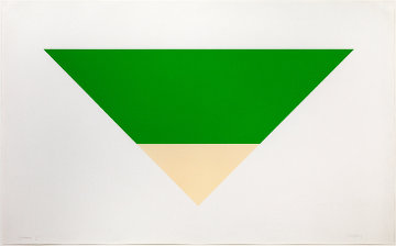 Green / White 1970 Limited Edition Print - Ellsworth Kelly