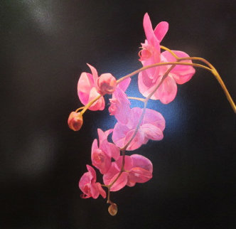 Moth Orchid 2004 39x39 Original Painting - James Lahey