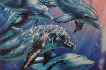 Dolphin Quest II Limited Edition Print - Christian Riese Lassen