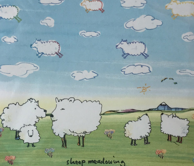 Sheep Meadowing 2003