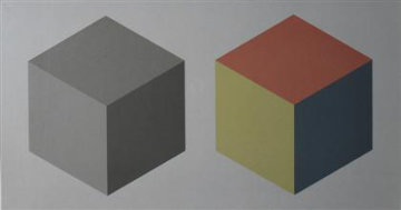 2 Cubes 1989 Limited Edition Print - Sol LeWitt