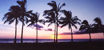 Waikiki Palms, Hawaii Panorama - Peter Lik