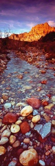 Desert Stream (Red Rock Canyon, Nevada) 83/950
