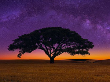Celestial Dream Panorama - Peter Lik