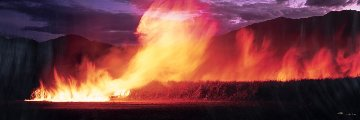 Cane Fire (Artist Proof) Panorama - Peter Lik