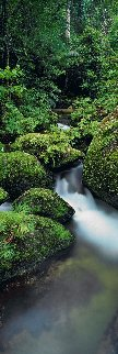 Hidden Falls Panorama - Peter Lik