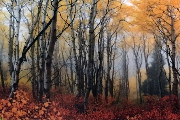 Autumn Mist by Peter Lik