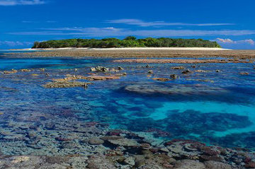 Coral Island  (small ed 100) (Lady Musgrave Island, Great Barrier Reef Panorama - Peter Lik