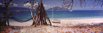Island Life (Fitzroy Island, Queensland) (small edition 100) Panorama - Peter Lik