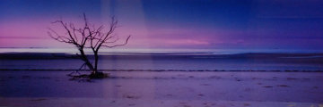Solitude (Cape York, Queensland) Panorama - Peter Lik