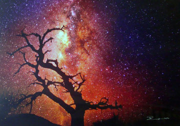 Tree of the Universe (Mauna Kea, The Big Island, Hawaii) Panorama - Peter Lik