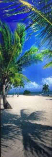 On The Beach (Islamorada, Florida) Panorama - Peter Lik