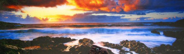 Genesis (Hana, Hawaii) Panorama - Peter Lik