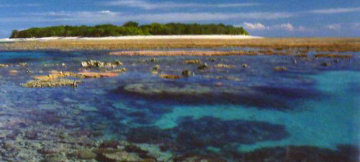 Coral Island (Small edition) Lady Muskgrave Island  Panorama - Peter Lik
