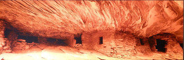 Fire Rock (Cedar Mesa, Utah) Panorama - Peter Lik
