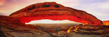 Majestic (Canyonlands NP, Utah) Panorama - Peter Lik