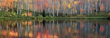 Autumn Echoes  Panorama - Peter Lik