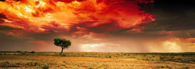 Dreamland (Innamincka, South Australia)