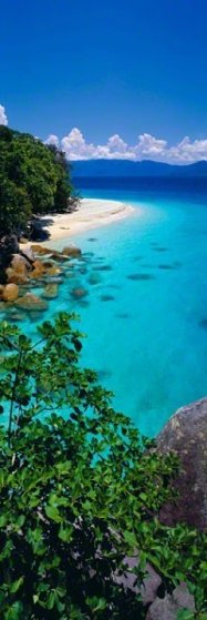 Pure (Fitzroy Island, Queensland)