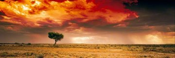 Dreamland Innamincka, South Australia  Panorama - Peter Lik
